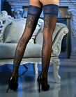 Luxury Hosiery Ballerina 473 Hold Ups Thigh High Stockings Studio Collants