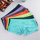 Sexy Lingerie Men's Briefs Underwear Bikini Boxer Briefs Underpants Short Pants