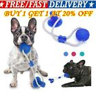 Multifunction Pet Molar Bite Toy Interactive Fun Pets Toy with Suction Cup Dog D