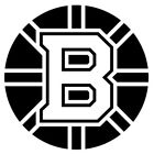 Boston Bruins NHL Ice Hockey Sticker Decal $2.99 USD on eBay
