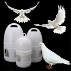 Pigeons Feeder Plastic Water Pot Pet Drinker Dispenser Container Birds Supplies