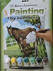 Royal & Langnickel Paint By Numbers Artist Painting Kit Themed A4 59 Designs New