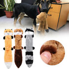 Cat Supplies Plush Vocalization Raccoon Toy Molars Toothbrush Dog Chew Toys