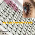 Premade Russian Volume Fans Natural Long Lash Eyelashes Extension Faux Mink