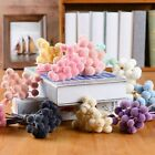 10pcs/set Decorative Preserved Flowers Ball Natural Craspedia Bouquets Home.