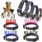 Dog Puppy Cat Collar Nylon Adjustable Collars Colourful Pet Accessories S M L XL