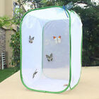 Foldable-Mantis-Stick-Insect-Butterfly-Plant-Cage-Breeding-Housing-Enclosure-Net