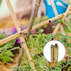 2FT 3FT 4FT 5FT 6FT Bamboo Garden Canes Strong Thick Quality Plant Support Canes
