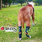 Dog Brace Back Leg Support - Pair of Hock Braces for Hind Legs - Knee Wrap ACL