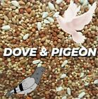 Pigeon Dove Seed Wild Bird Feed Food Resealable CHOOSE SIZE!!!
