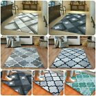 Non Slip Washbl Indoor / Outdoor Patio Area Rug Garden Small Washable Door Mats