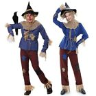 Wizard of Oz Scarecrow Costume for Adults Fairy Tale Fancy Dress