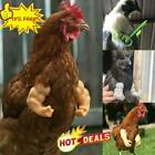 Arms For Chicken 3D Printed, Fist Arms Meme, Thumbs-Up Decoration HOT A7C9