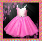 Hot Pink Wedding Party Flower Girls Tulle Dress SZ 2-8Y