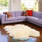 100% Genuine Sheepskin Area Rug Modern Luxuriously & Silky Small to Extra Large