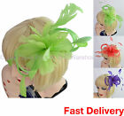 Spring Race Carnival Melbourne Cup Feather Fascinator Headband Clip Brooch