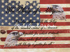 Flag with Pledge of Allegiance & Eagle  Matted Picture Home Wall Art Decor A332