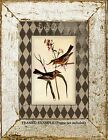 Vintage BIRDS, RUSTIC DISTRESSED FRENCH COUNTRY DESIGN Natural History ART PRINT