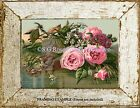 Pink ROSES DAISIES STREAM Early 1900s Antique Vintage ART PRINT Country COTTAGE