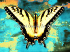 Abstract Yellow Tiger Swallowtail Butterfly Matted Picture Home Wall Art A359