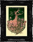 Art Nouveau FAIRY with SWAN HARP Night Sky STARS Irises Frogs Antique ART PRINT