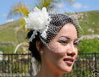 Mini VEIL SET w/ 906 PEONY Feather Fascinator & Ivory / White Birdcage Blusher