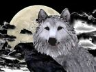 Wolf and Crow, Unlikely Friends in a Storm Matted Picture Art Print A387