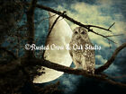 Barred Owl Against Moon Matted Photo Picture Wall Art Choose your Size A137