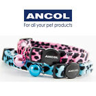 NEW Ancol Velvet Leopard Cat Collar + Bell Safety Buckle Turquoise Pink JTB