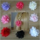 2 Chiffon flower Hair clips- you choose both colours  (5cm approximately)