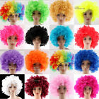 AFRO FUNNY  CURLY CLOWN PARTY 70s 80s WIG DISCO CIRCUS COSTUME DRESS UP FANCY FR