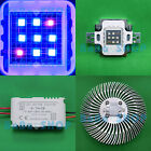 10W Blue 455nm + Red 630nm 7:2 LED Lavender Violet light for Aquarium + Driver