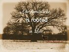 Our Family Tree Quote on Rustic Tree Matted Picture Art Print A658