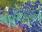 Vincent Van Gogh Irises Canvas Wall Art Poster Print Painting