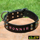 "Domed Studs Black/Espresso Leather 1.5"" Dog Collar Personalized Pet Name"