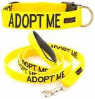 Luxury Snap Buckle Nylon Pet Dog Collar Leash Sets Color Coded Yellow ADOPT ME