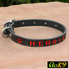 "Black/Espresso 5/8"" Mini Paw Prints Leather Cat Dog Collar Personalized Pet Name"