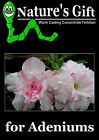 ADENIUM PLANT FERTILIZER, WORM CASTING EXTRACT CONCENTRATE, ORGANIC