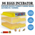 NEW 96 EGGS AUTOMATIC CHICKEN EGG INCUBATOR POULTRY HATCHER HATCH DUCK TURKEY