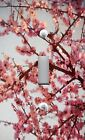 Light Switch Plate & Outlet Covers CHERRY BLOSSOMS IN BLOOM