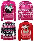 New Kids Girls Knitted Reindeer Pudding Christmas tree Xmas Novelty Jumper Top