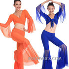 C91811 Belly dance costume Tribal BellyTop Top Trousers