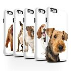 Dog Breeds Phone Case/Cover for Apple iPhone 6+/Plus 5.5