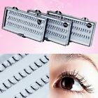 60x Individual Extension Fake Eye Lashes Cluster Flare Weekend Party 8/10/12 mm