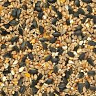 WILD BIRD SEED FEED FOOD MIX TREAT FOR FEEDERS FREE POSTAGE FEEDS FOR BIRDS