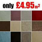 Galton Twist CHEAP Heavy Domestic Carpet Lounge Bedroom Hall Stairs Felt Back 4m