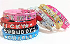 Personalized Leather Pet Dog Cat Collar 6 FREE Rhinestone Letters & Charms