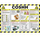 COSHH Poster - A704