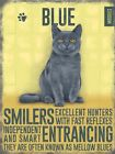 RUSSIAN BLUE CAT FELINE KITTEN METAL PLAQUE TIN SIGN OTHER BREEDS ARE LISTED 820
