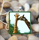 """KISSING GIRAFFES"" GIRAFFE FRIENDSHIP LOVE GLASS TILE PENDANT NECKLACE KEYRING"